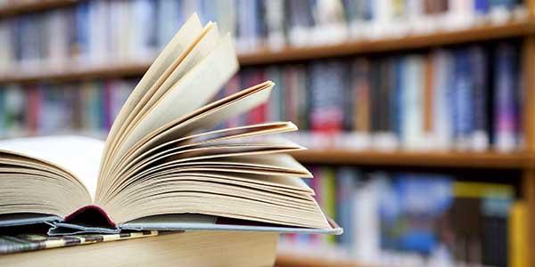 Библиотека в Гатчине