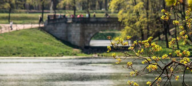 Гатчинский парк весной